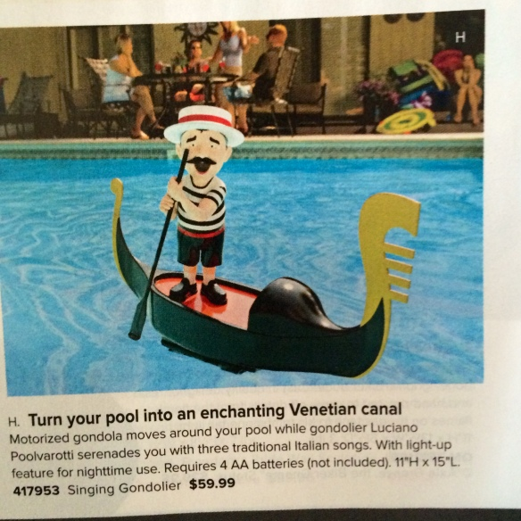 Items like this in the SkyMall catalog are the only things that kept me sane during my travels.